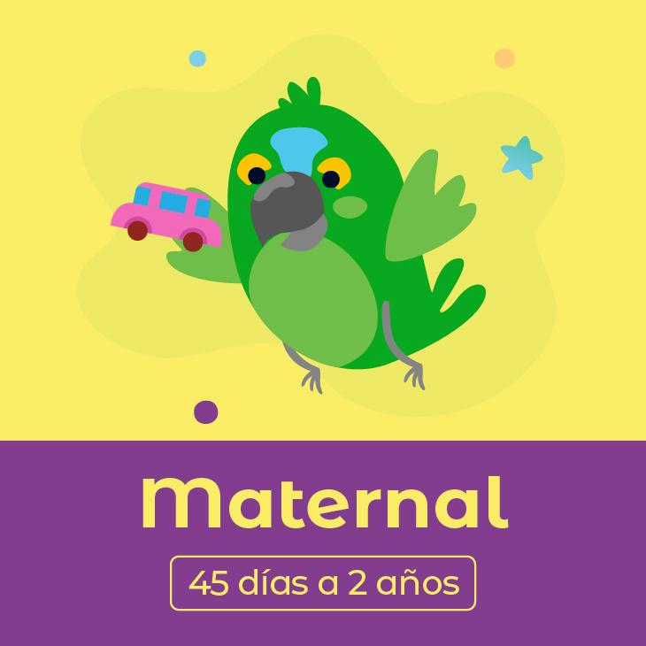 Maternal (45 días a 2 años)